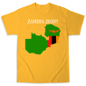 Picture of Zambia 2020